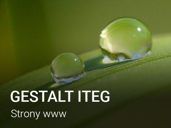 strona internetowa Gestalt ITEG